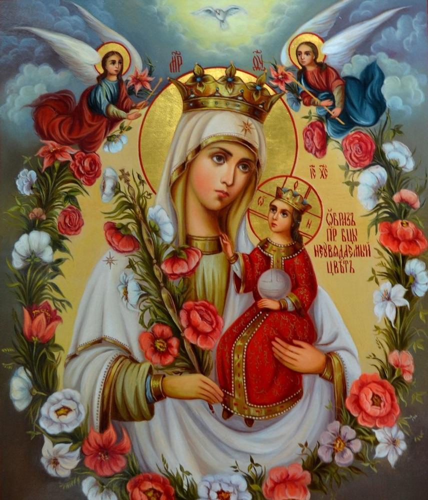 Молитвы иконе Божией Матери «Неувядаемый цвет»